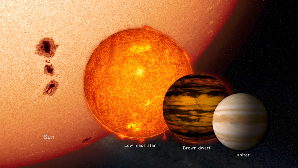 Brown dwarfs and other exotic objects